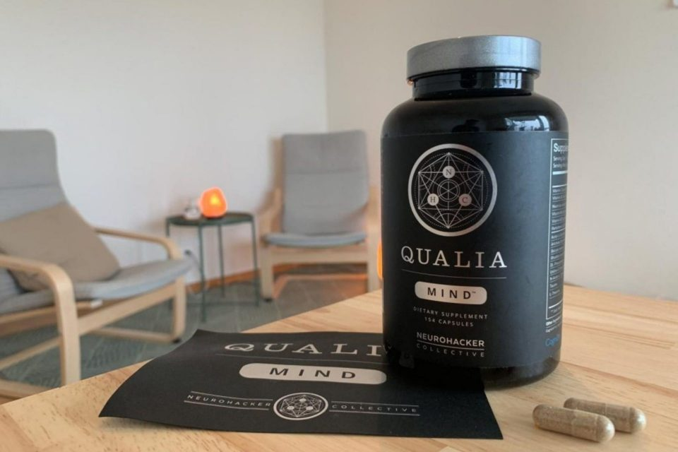 Review Of Qualia